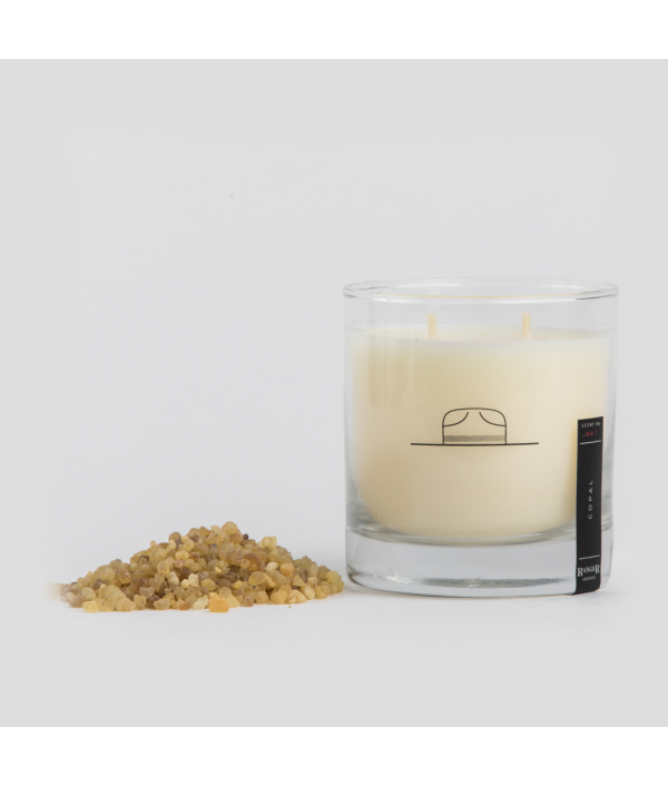 ranger station charcoal soy candle